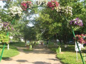 сквер парк двор