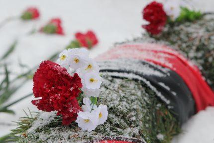 цветы венок победа мемориал война блокада кладбище