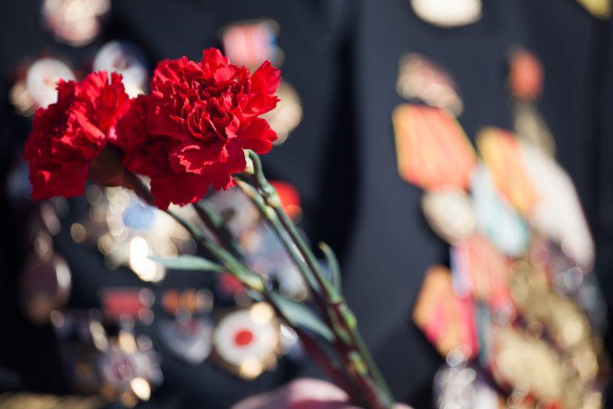 день победы ветеран гвоздики блокада