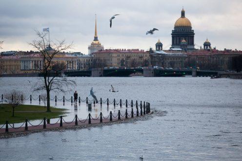 Фото: topdialog.ru