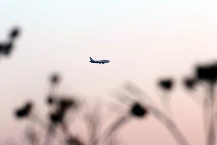 самолет аэропорт пулково