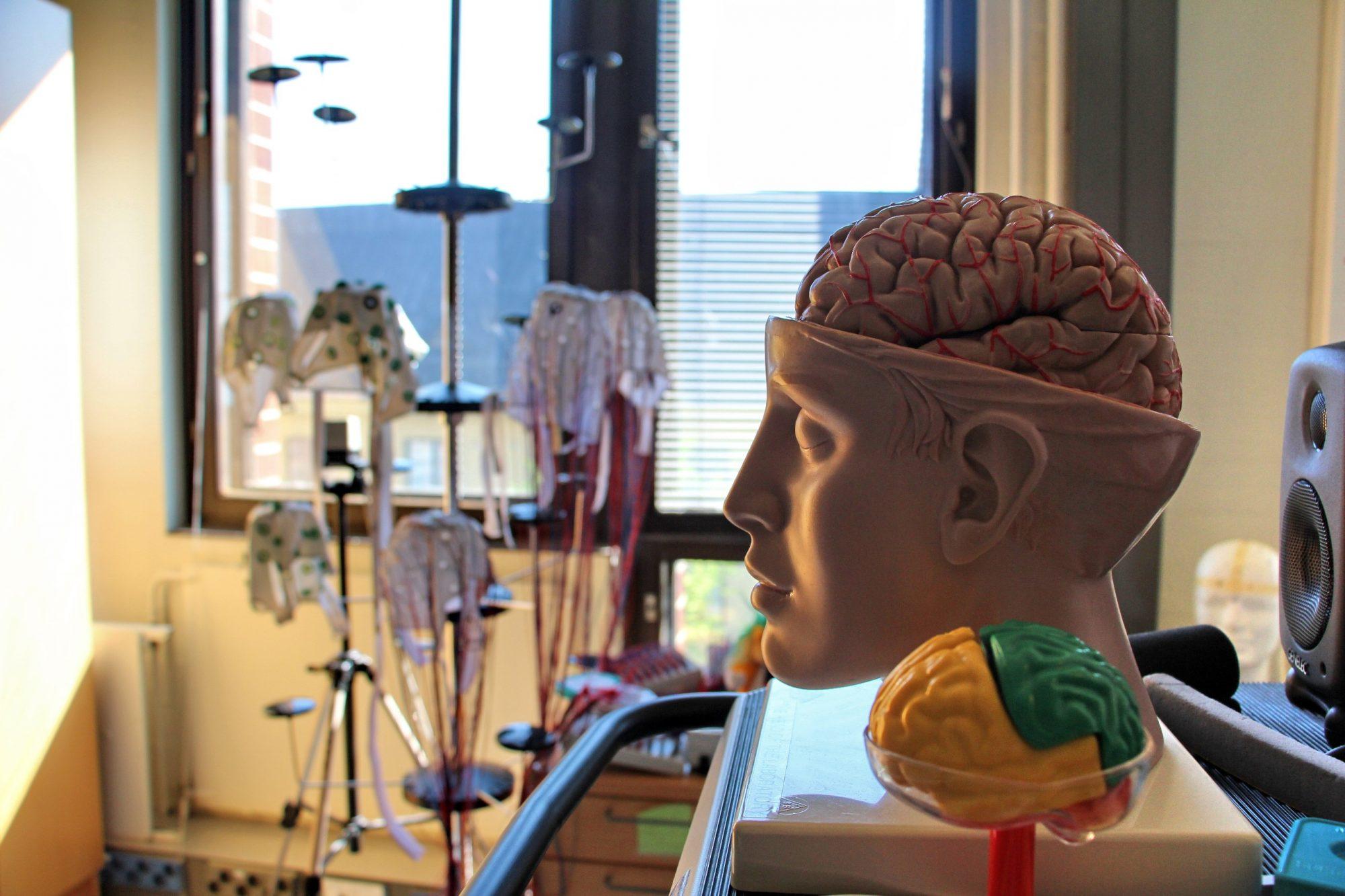 институт физиологии в Хельсинки Institutum Physiologicum