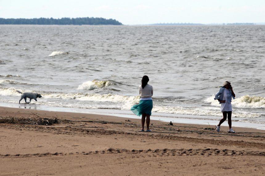 лето пляж ласковый море волны финский залив солнечное девушки с собакой