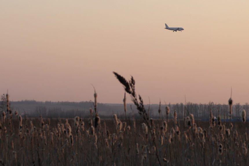 пулково самолёт авиалайнер поле ковыль