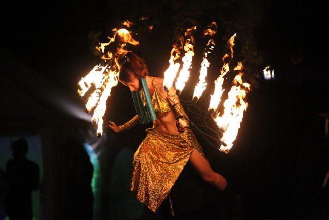 ночь света в гатчине огненное шоу