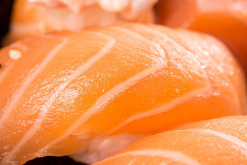 суши рыба лосось япония