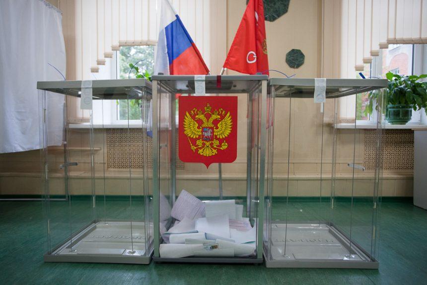 выборы участок Полтавченко урны уик