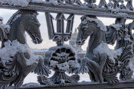 благовещенский мост лейтенанта шмидта иней снег зима гиппокампы морские коньки