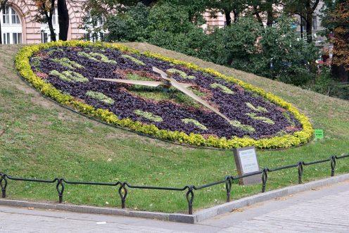 ВКГА объявят конкурс наразработку концепции благоустройства Александровского парка