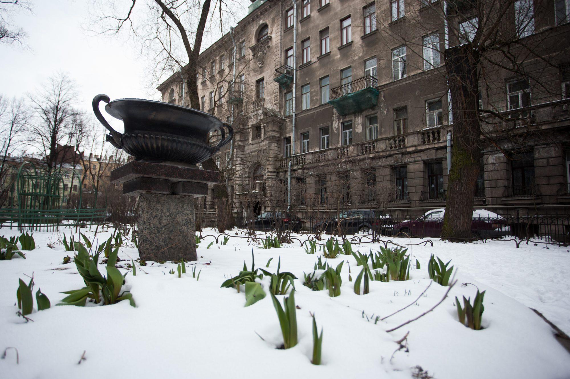 необычные дворы петербурга