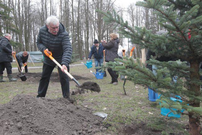 Полтавченко принял участие в общегородском субботнике и посадил ель