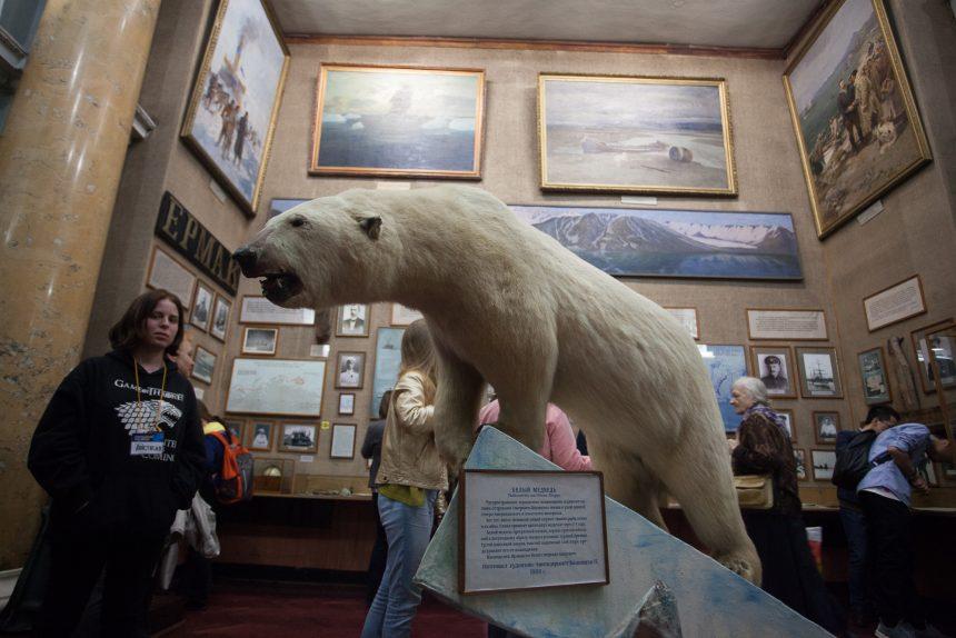 Ночь музеев 2017 Музей Арктики и Антарктики белый медведь чучело