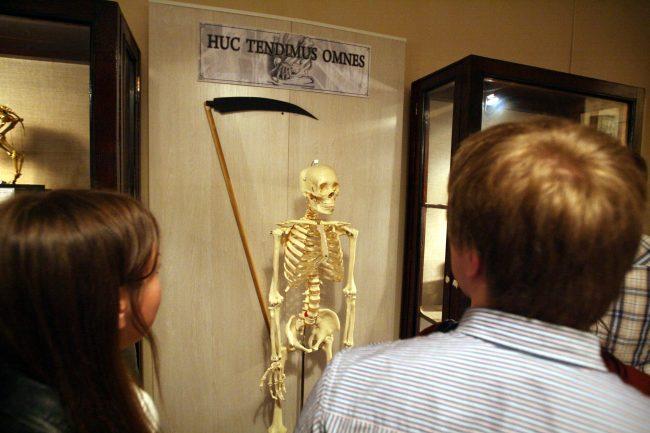 ночь музеев 2012 военно-медицинский музей скелет