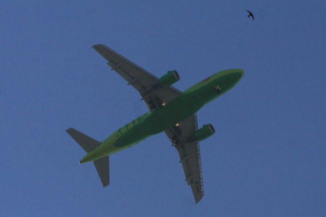 Рейсы в Берлин ... - airberlin.com