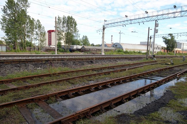 железнодорожная станция цветочная железная дорога