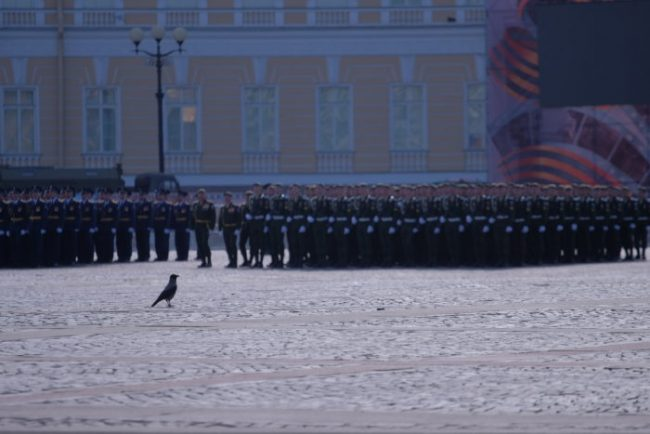 69-09.05.2016 - парад на Дворцовой площади в День Победы