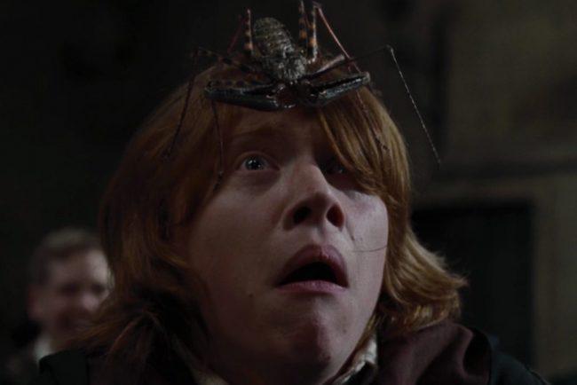 Рон уизли гарри поттер страх паук