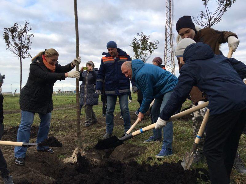 день благоустройства зелёные насаждения Александр Говорунов