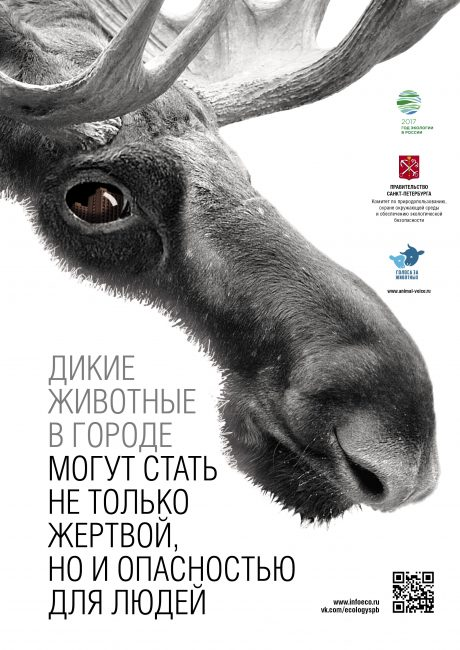 Poster_animal_protection_A3_3