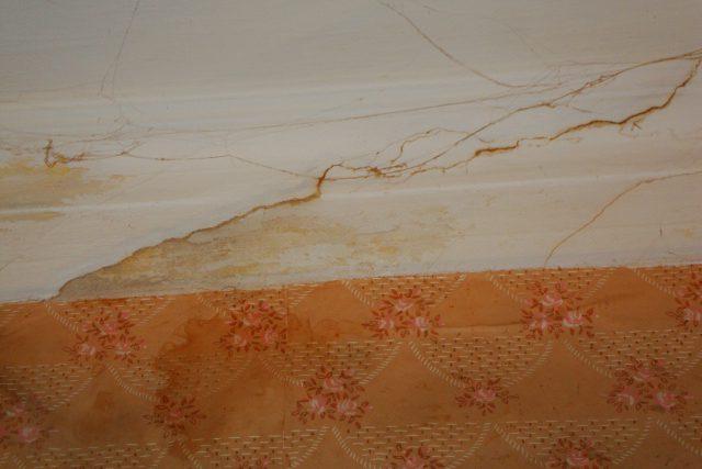 DSC09642  9-я советская 9/30 трещины обои подтеки трещины обои подтеки потолок