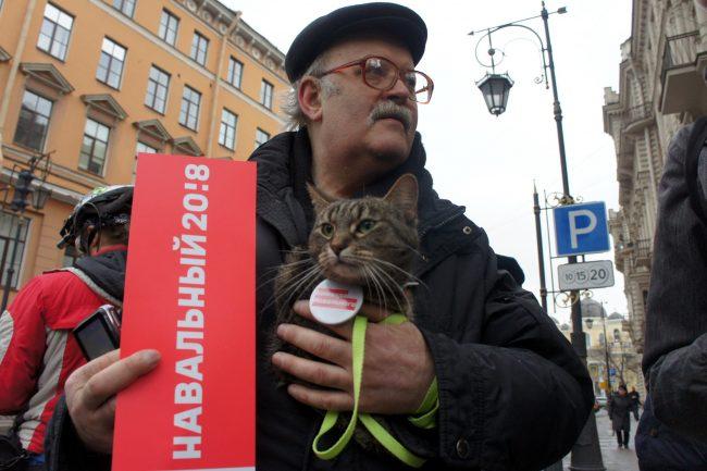 акция протеста забастовка избирателей сторонники Навального оппозиция политика кот кошка
