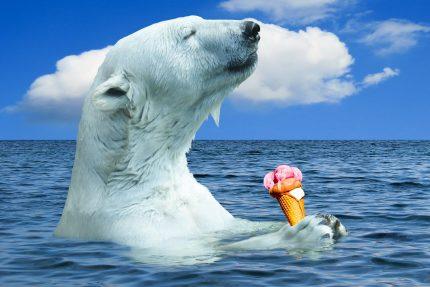 мороженое, пломбир, медведь