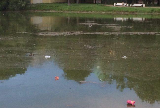 таврический сад водоём загрязнение вода река озеро