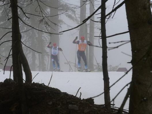 биатлон лыжи паралимпиады