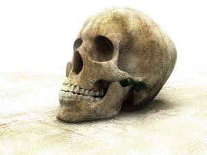 череп скелет останки