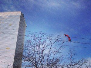 фото vk.com/irkin2