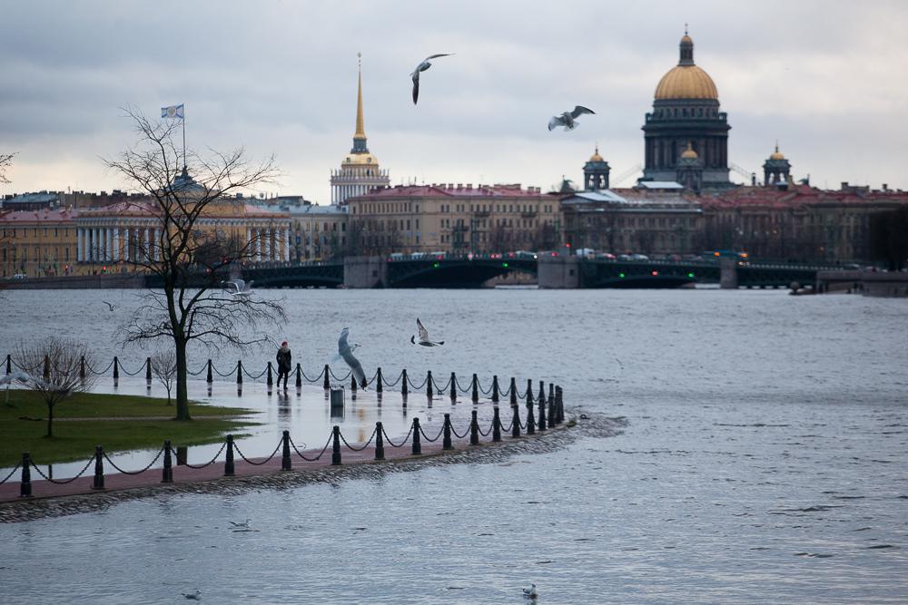 наводнение петербург нева исаакиевский собор