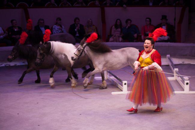 цирк чинизелли цирк на фонтанке дрессировщик пони