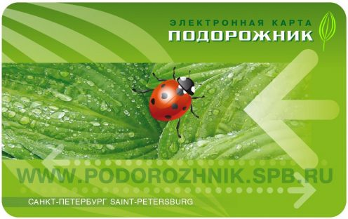 фото с сайта kolpinonews.ru