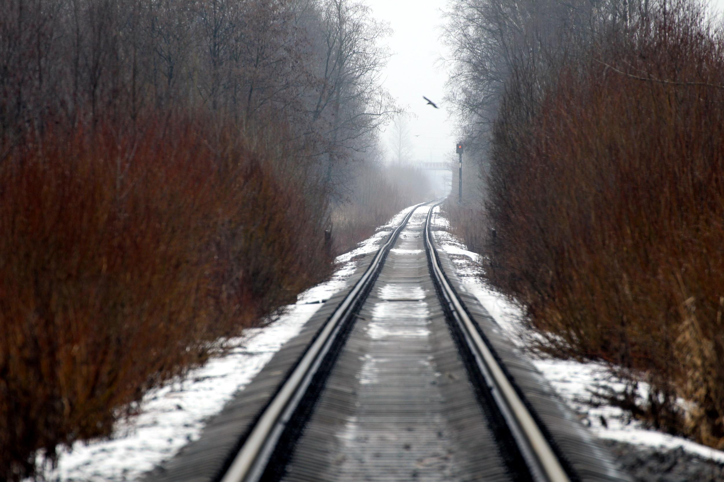 оккервиль железнодорожная ветка пути рельсы полотно шпалы лес снег туман