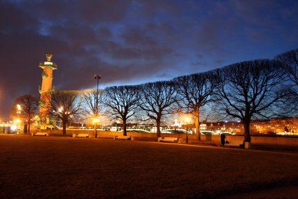 стрелка васильевского острова ростральная колонна деревья вечер весна