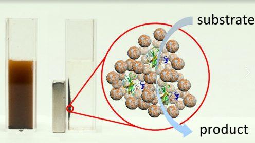 иллюстрация предоставлена университетом ИТМО