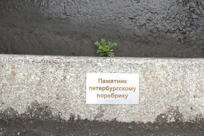 фото из сообщества «Спасибо!» (ВКонтакте)