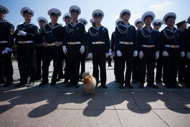 речной карнавал моряки военный оркестр