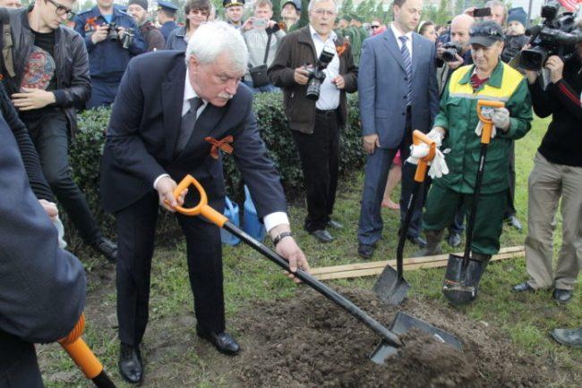 полтавченко сажает дерево