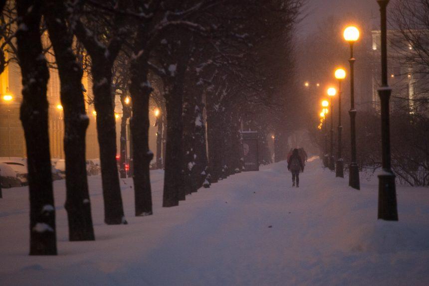 снег снегопад зима в Петербурге сугробы