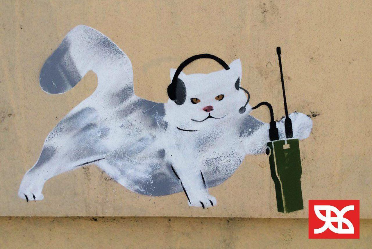 котики-защитники граффити движения явь