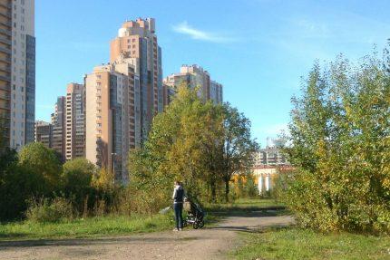 сквер улица савушкина 112 зелёная зона
