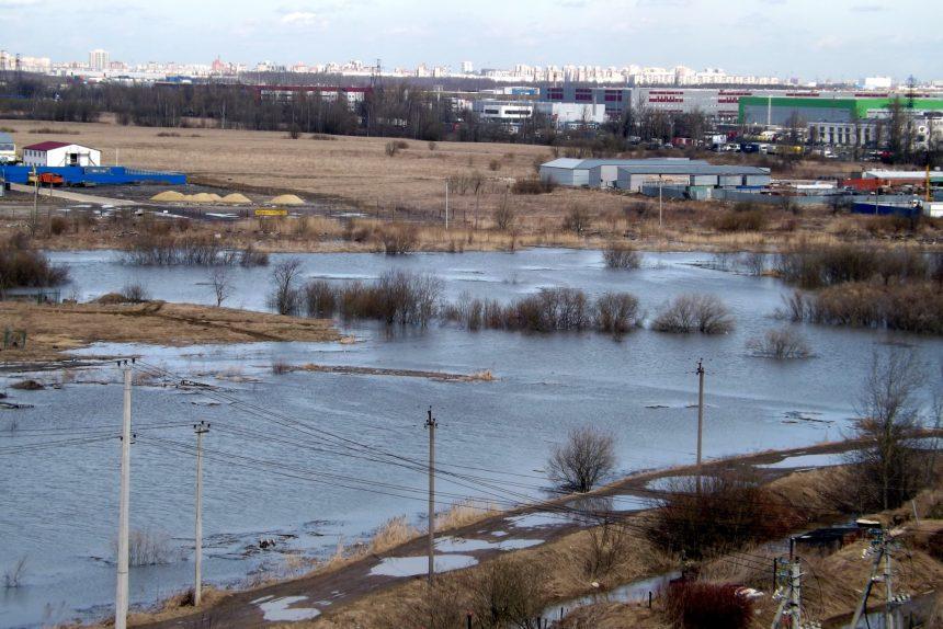паводок наводнение затопление пушкинский район посёлок ленсоветовский