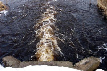 вода река Ленинградская область