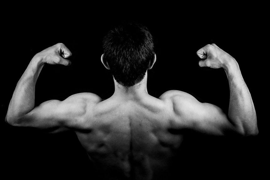 мышцы мускулы спина мужчина