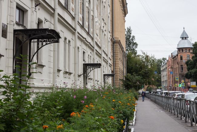 школа 80 мира 18  shkoli_mira18-3