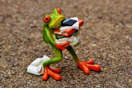 лягушка работа стресс психология