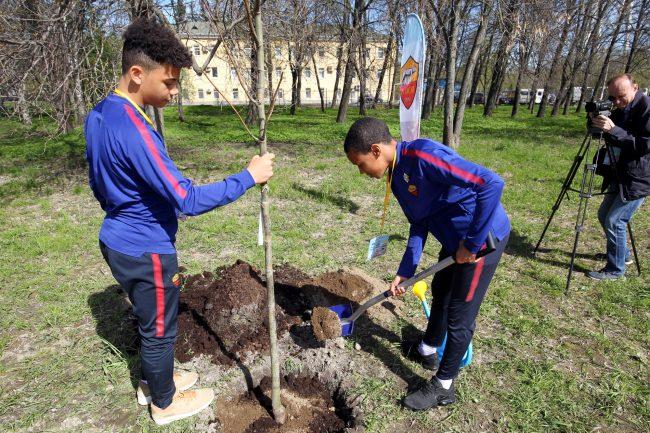 кубок Бурчалкина детский спорт футбол посадка деревьев