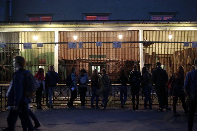 Ночь музеев 2018 зоопарк