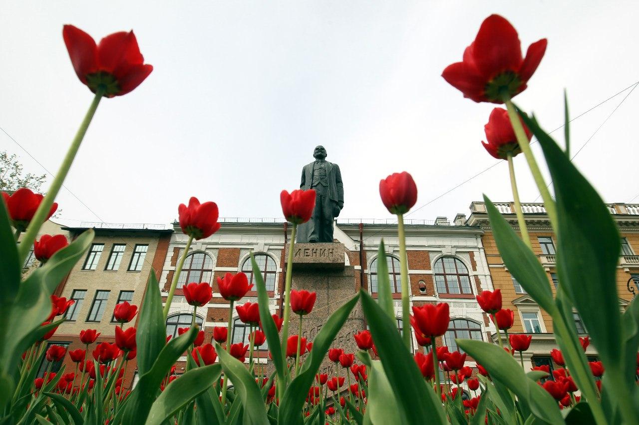 тюльпаны цветы памятник Ленину Большой проспект Васильевского острова